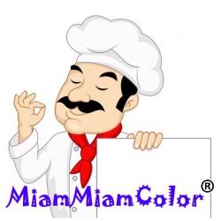 encre alimentaire couleur 500ml pour Epson