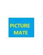 cartouche d'encre Epson PictureMate
