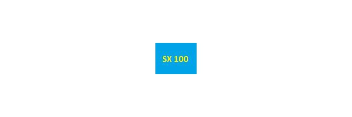 SX 100