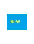 cartouches Canon BJ-W