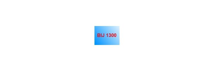BIJ 1300