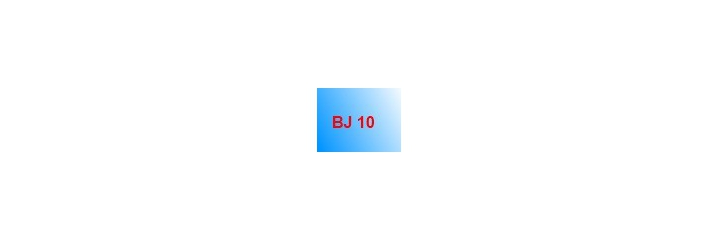 BJ 10