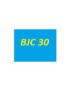 cartouche Canon BJC 30