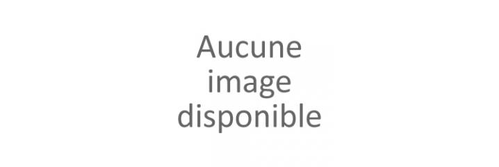 PGI580/CLI581: cartouches alimentaires